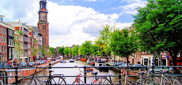 Transparency & disclosure platform, the Dutch approach